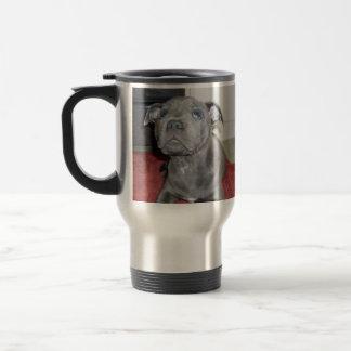 Blue_Staffordshire_Bull_Terrier_Puppy, Taza Térmica