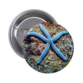 Blue starfish tropical ocean Raja Ampat Islands Pinback Buttons
