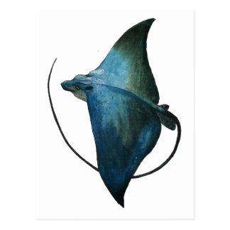 Blue Stingray Illustration Postcard
