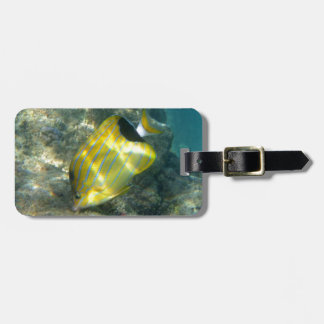 Blue-striped Butterflyfish Bag Tag