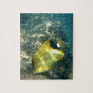 Blue-striped Butterflyfish Jigsaw Puzzle