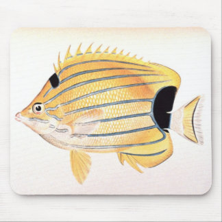 Blue-Striped Butterflyfish Mouse Pad