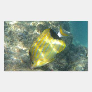 Blue-striped Butterflyfish Rectangular Sticker