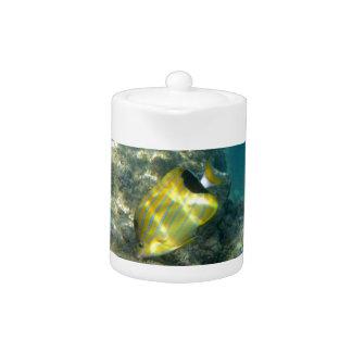 Blue-striped Butterflyfish Teapot