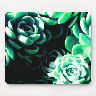 Blue Succulents Mouse Pad