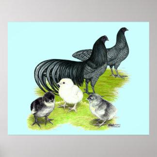 Blue Sumatra Family Poster