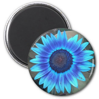 Blue Sunflower Magnet