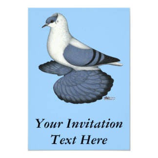 Blue Swallow Pigeon Card