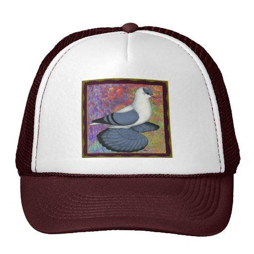 Blue Swallow Pigeon Framed Hat