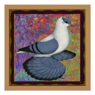 Blue Swallow Pigeon Framed Poster