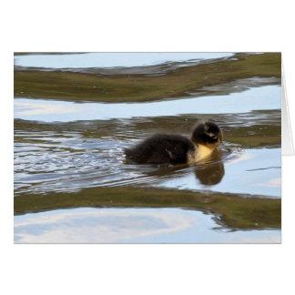 Blue Swedish Duckling Card
