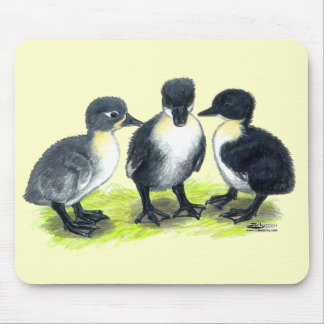Blue Swedish Ducklings Mouse Pad