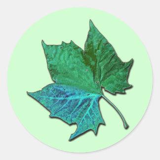 Blue Sycamore Classic Round Sticker