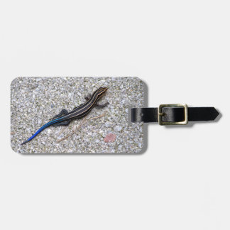 Blue Tailed Skink Luggage Tag