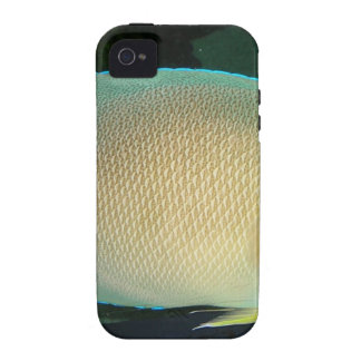 Blue-Tan-Green Tropical Fish Swimming in Water iPhone 4 Covers