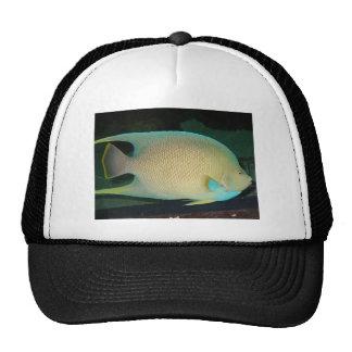 Blue-Tan-Green Tropical Fish Swimming in Water Trucker Hat