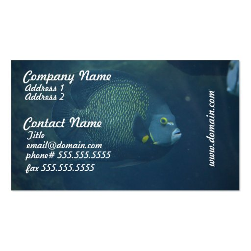 Aquarium fish business card templates bizcardstudio blue tang fish business card colourmoves Gallery