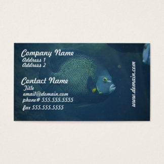 Blue Tang Fish Business Card