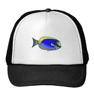 Blue Tang Fish Mesh Hat