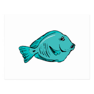 Blue Tang Fish Postcard