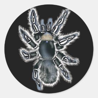 blue tarantula classic round sticker
