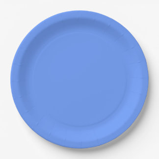 Blue Template Paper Plate