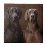 Blue & Teyla the Weimaraners Ceramic Tile