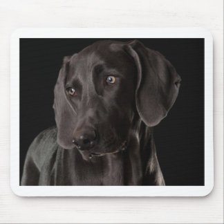 Blue the Weimaraner Mouse Pad
