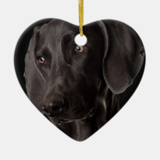 Blue the Weimaraner Christmas Ornaments