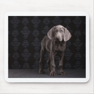 Blue the Weimaraner Puppy Mouse Pad
