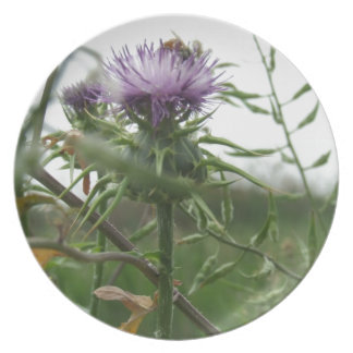 Blue Thistle Plate