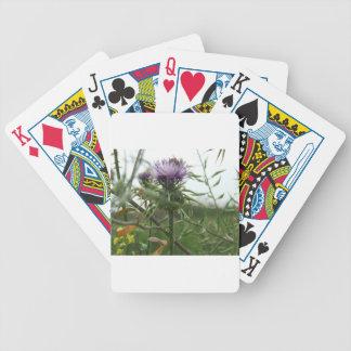 Blue Thistle Card Decks