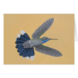 Blue-throated Hummingbird Card