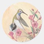 Blue-Throated Hummingbird Round Sticker