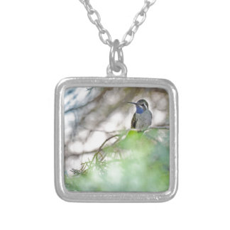Blue-throated Hummingbird Square Pendant Necklace