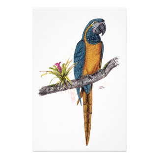Blue Throated Macaw Stationery