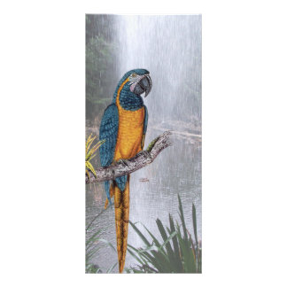 Blue Throated Macaw with Waterfall Personalized Rack Card