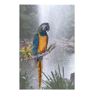 Blue Throated Macaw with Waterfall Stationery