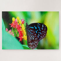 Blue Tiger Tirumala Hamata Butterfly. Jigsaw Puzzle