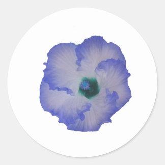 Blue tinted hibiscus flower classic round sticker