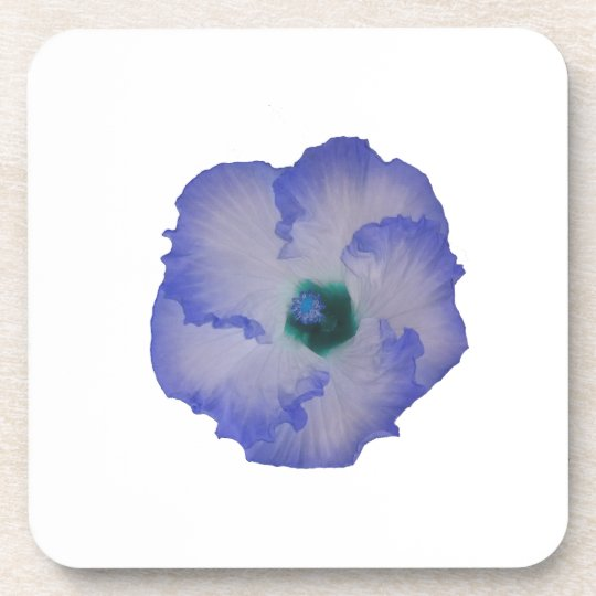 Blue tinted hibiscus flower coaster