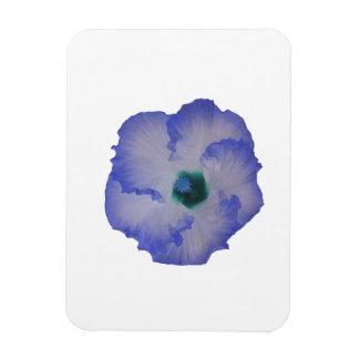 Blue tinted hibiscus flower rectangular photo magnet