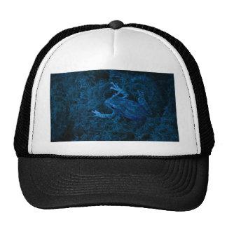 Blue tinted tree frog moss amphibian animal mesh hat