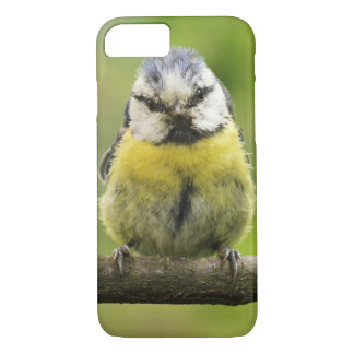 Blue Tit bird iPhone 7 Case