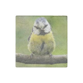Blue Tit bird Stone Magnet