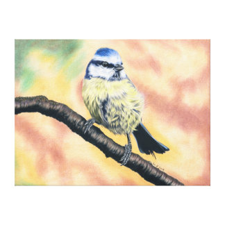 Blue tit - coloured pencil design canvas print