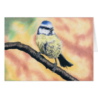 Blue tit - coloured pencil design card
