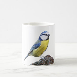 """Blue tit"" design mugs"
