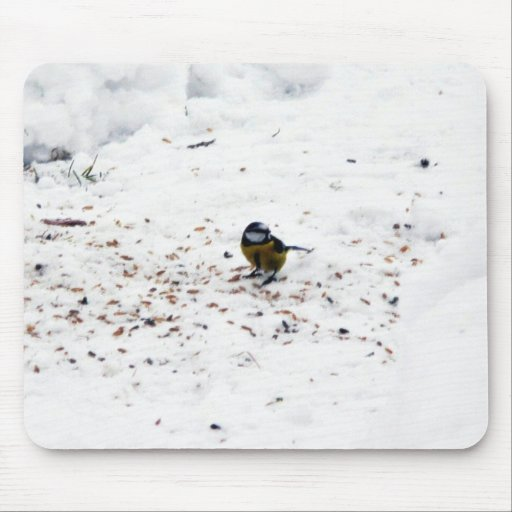 Blue Tit Eating Seed Mouse Pad
