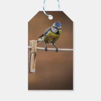 Blue Tit Gift Tag